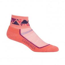 Icebreaker 頂級美麗諾羊毛 涼爽羊毛 IB101486-602 女短筒多功能運動襪